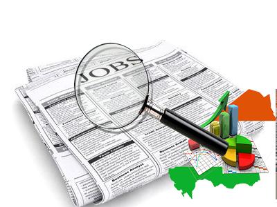 Aperçu du marché de l'emploi au Niger