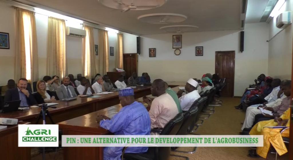 Pin une alternative pour le d veloppement de l agrobusiness for Chambre de commerce du niger