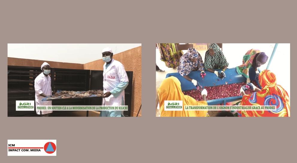 PRODEX : Pilier de la modernisation des unités de production agro-pastorale