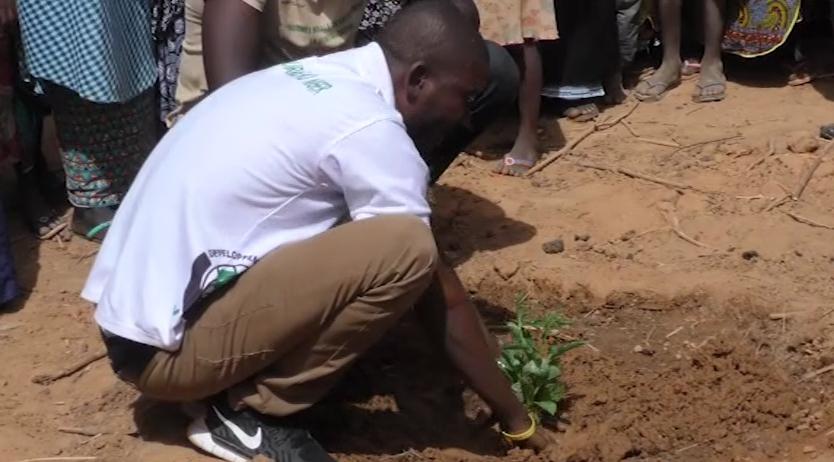 Un scolaire, un arbre: le défi générationnel