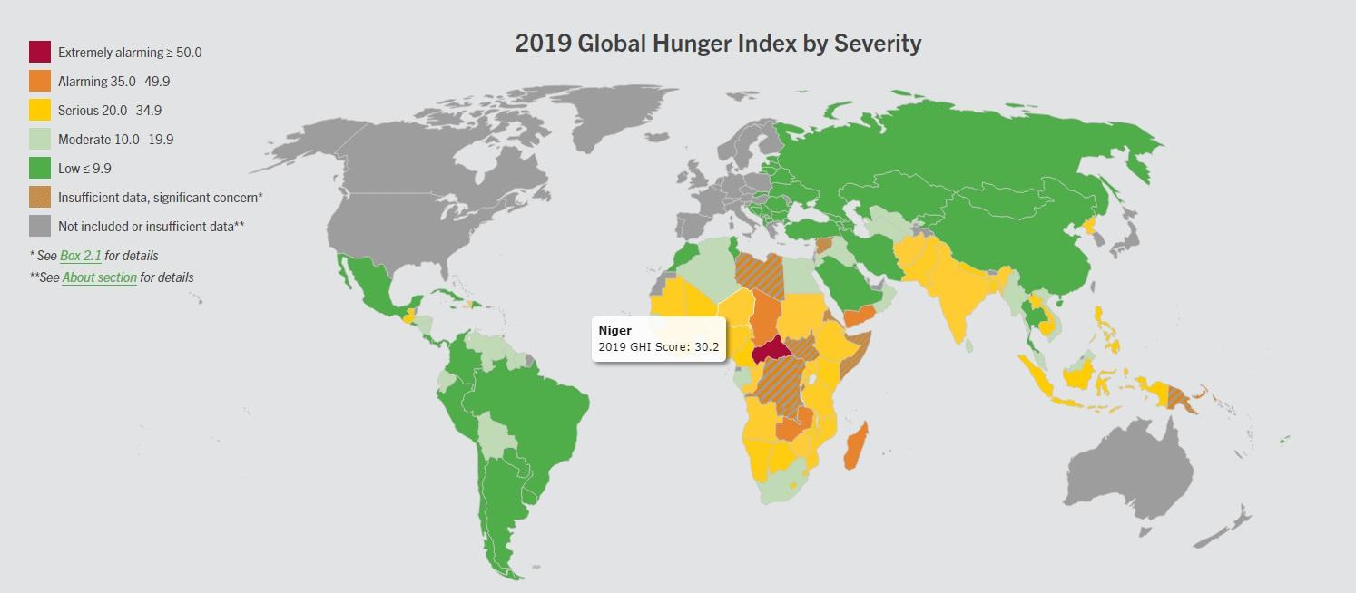 Indice de la faim dans le monde : le Niger occupe la 101ème  place
