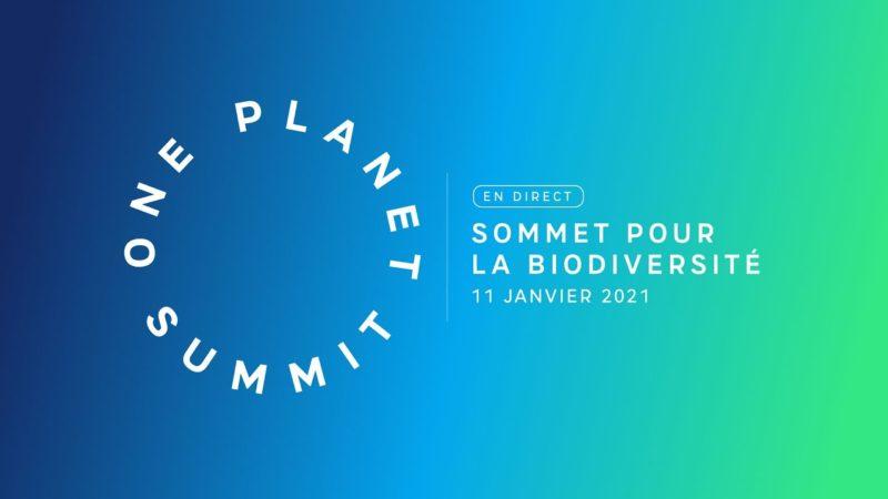 4ème édition du One Planet Summit pour la biodiversité: des engagements pour agir en faveur de la biodiversité